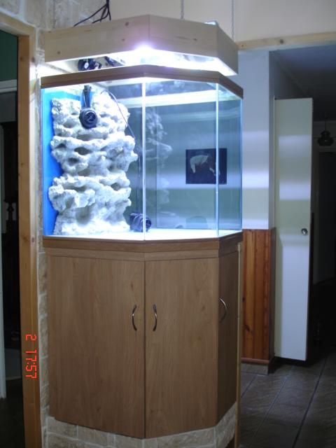 aquarium eau de mer colonne. Black Bedroom Furniture Sets. Home Design Ideas